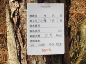 2019.3.2  樹幹注入 したものを、2019.12.21撮影